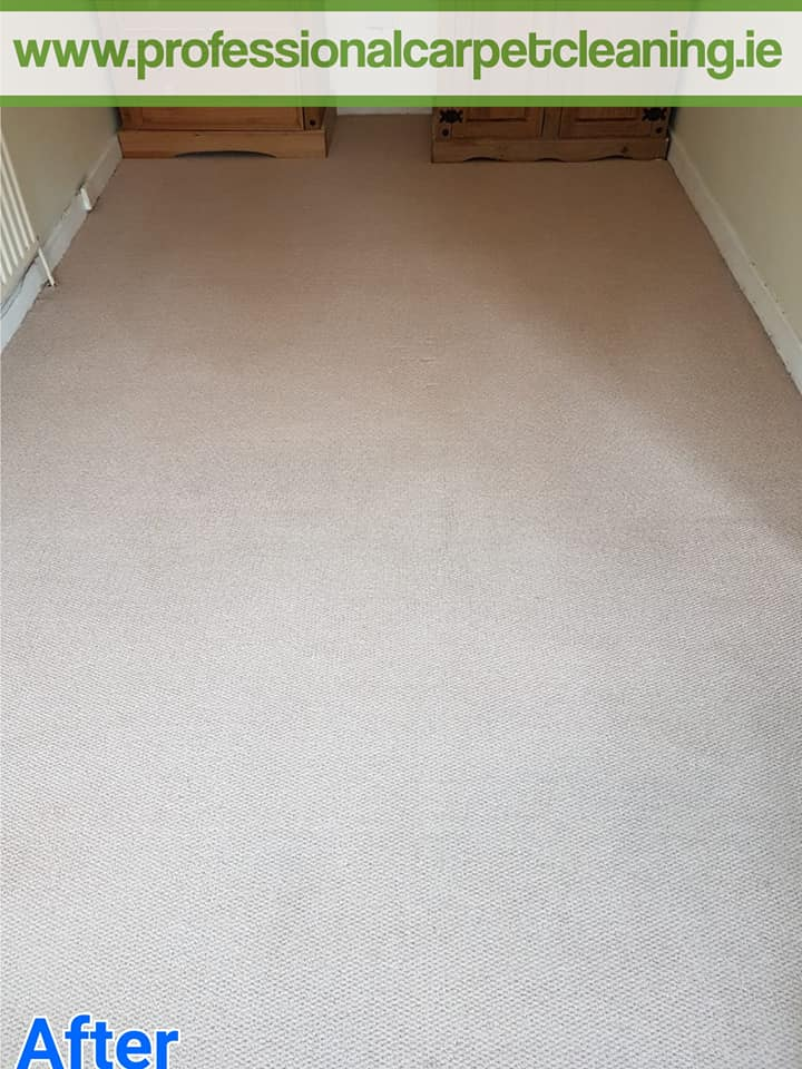 bedroom carpet after cleaning