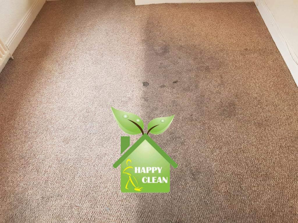 bedroom carpet cleaning | half before half after