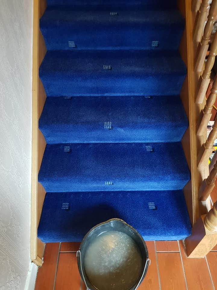 blue carpet cleaned