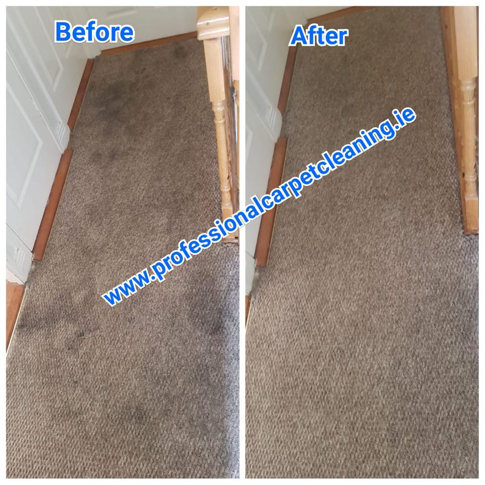 brown carpet cleaned