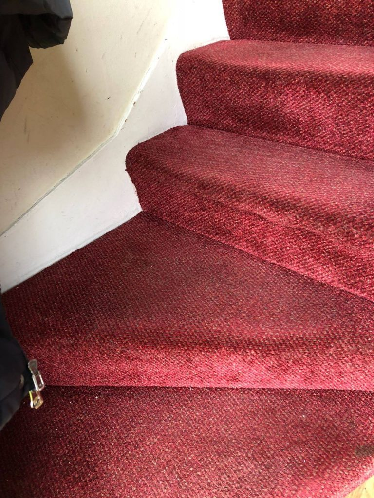 burgundy carpet before cleaning