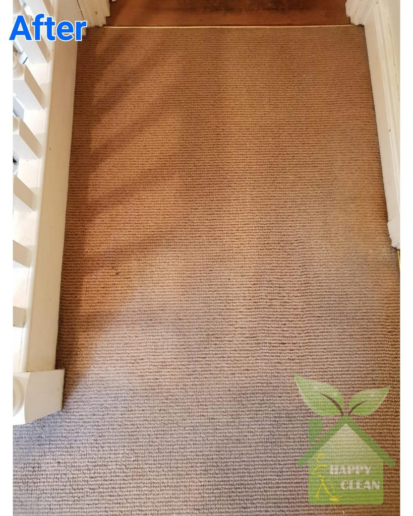 hall carpet cleaned