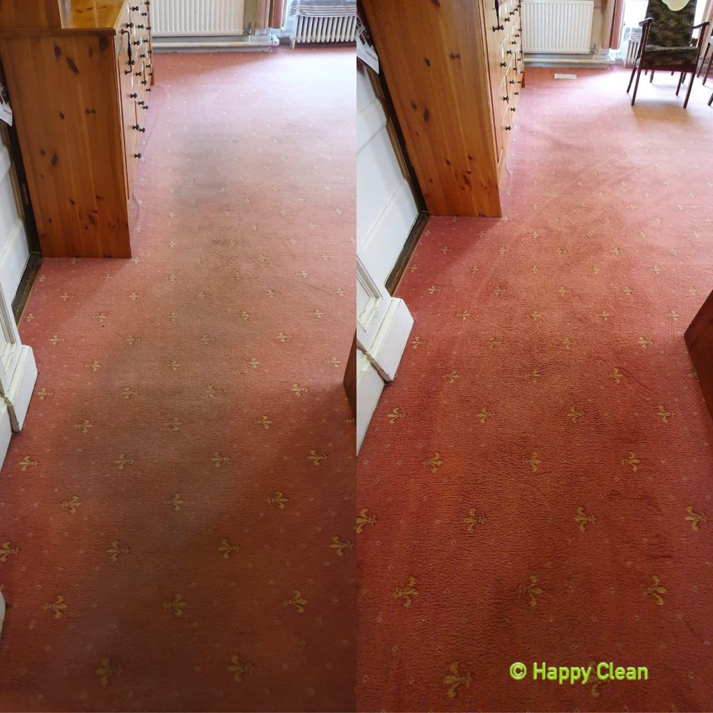 living room carpet cleaned | Before and After