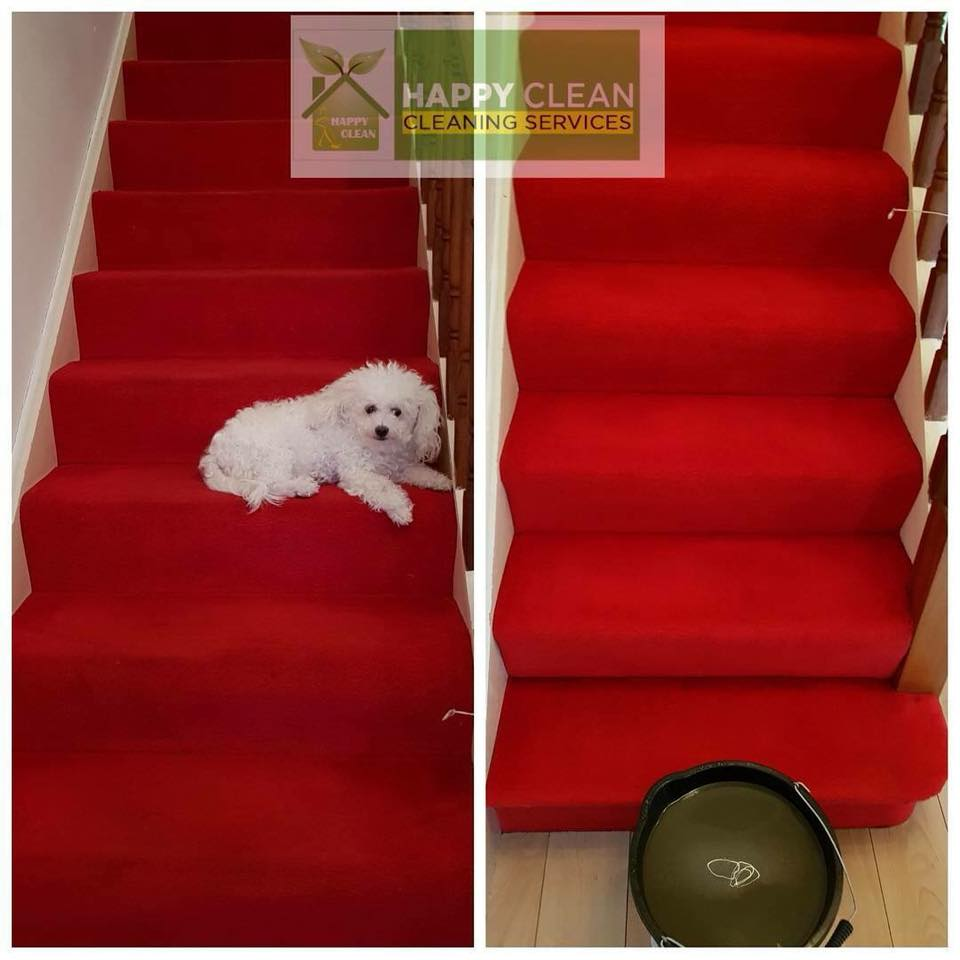 pet dirt carpet cleaning - before and after