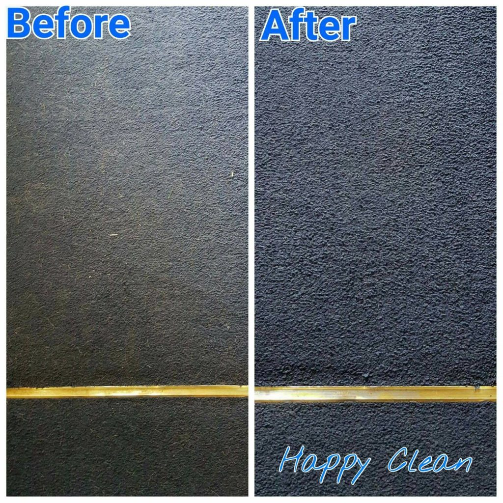 pet hair cleaning - before and after