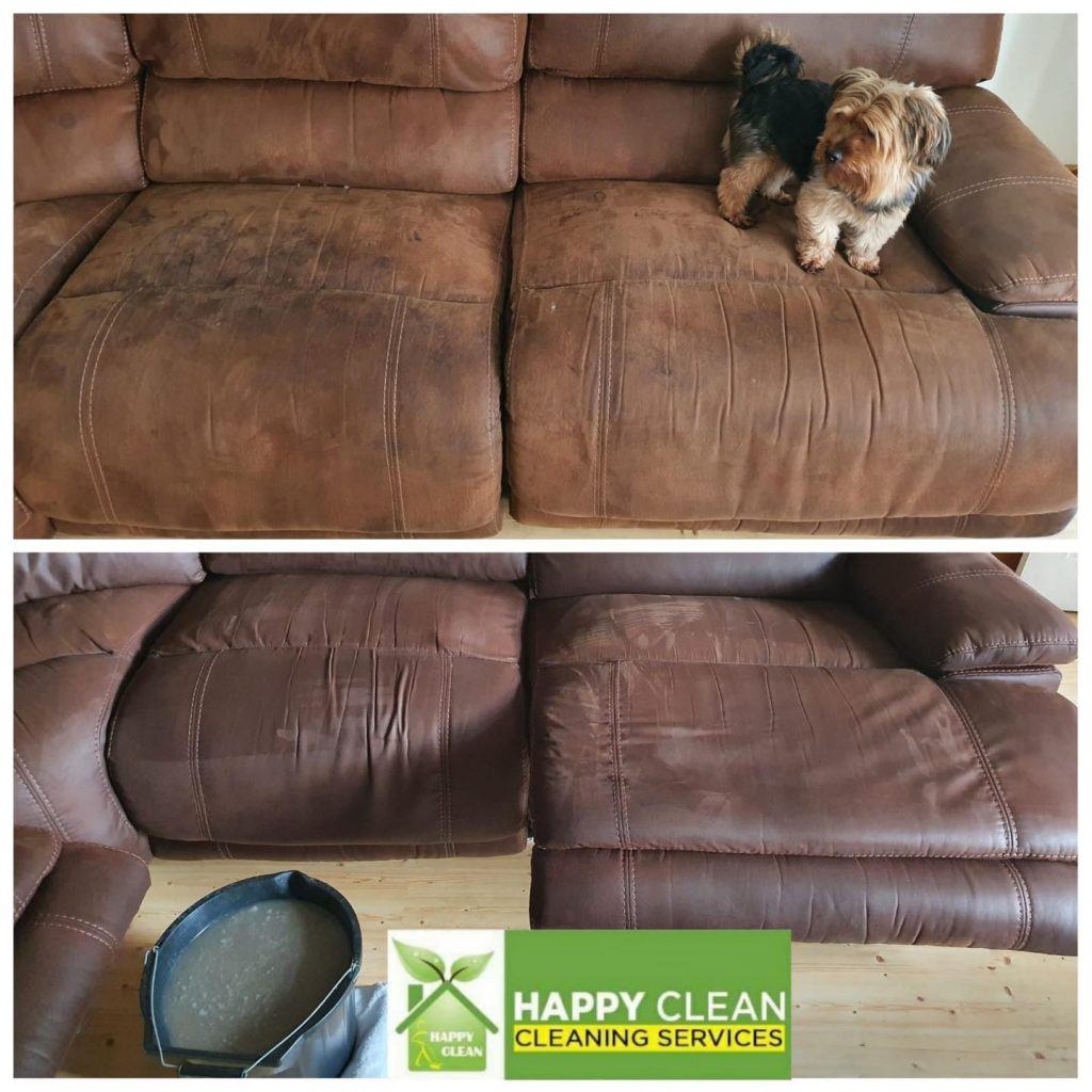 Pet sofa upholstery cleaning
