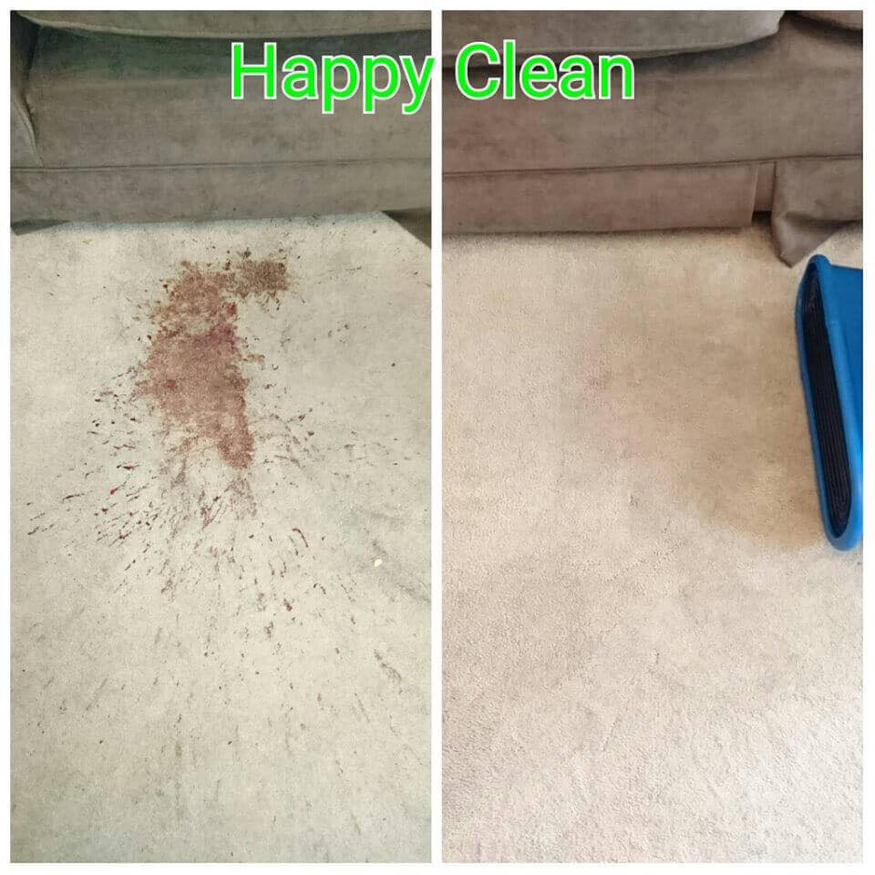 vomit stain carpet cleaning